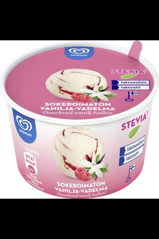 Ingman 120ML / 59g jäätelöpikari Van-Vadelma Laktoositon Sokeriton