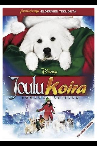 Dvd Joulukoira Joulun Jä
