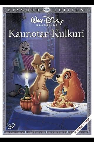 Dvd Kaunotar Ja Kulkuri