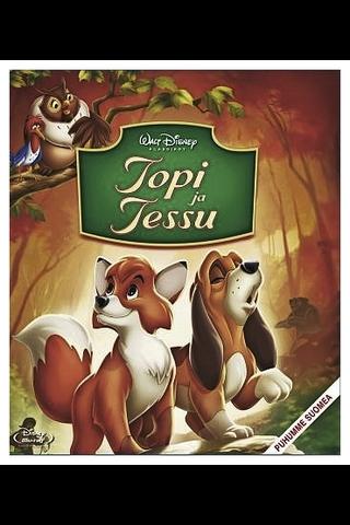 Bd Topi Ja Tessu