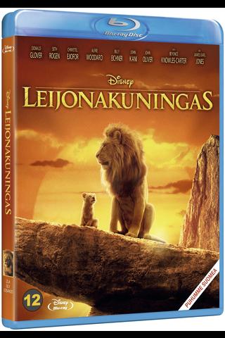 Bd Lion King