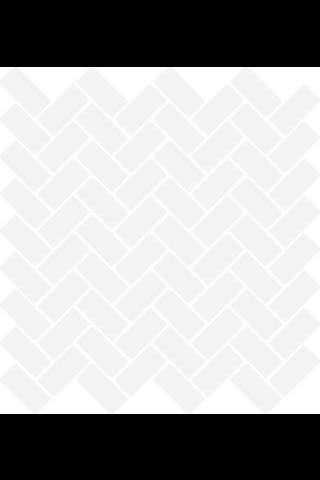 Herringbone Gloss Matt White 2.2X4.7 Lasitettu Mosaiikki verkolla valkoinen