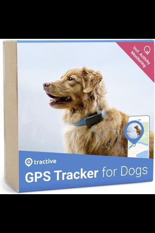 Tractive koiran GPS-paikannin