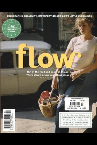 Flow, Infotekniikka