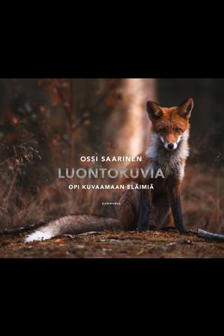 Gummerus Ossi Saarinen: Luontokuvia - opi kuvaamaan eläimiä