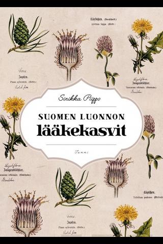 Piippo, Suomen luonnon lääkekasvit