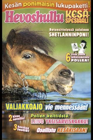 Hevoshullu Kesäspesiaali kirja