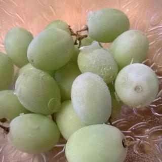Jäädytetyt viinirypäleet